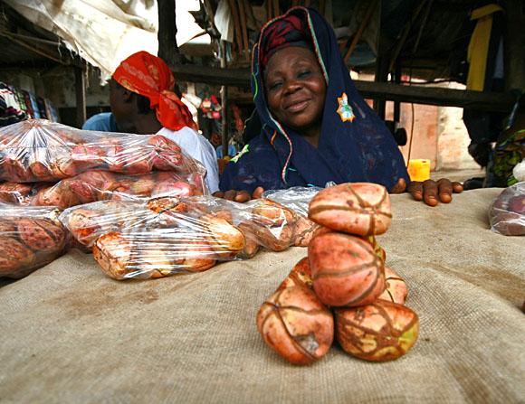 Prodavačka ořechů kola